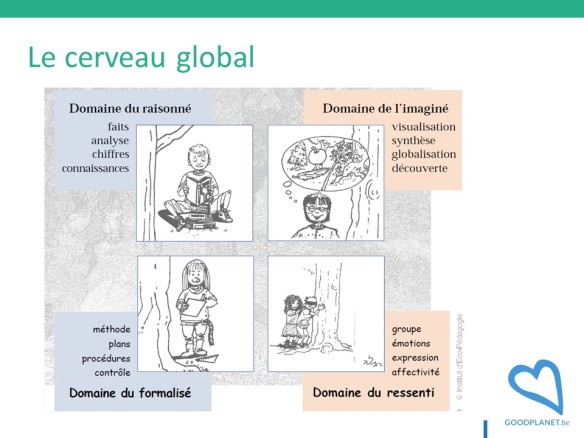 Cerveau global